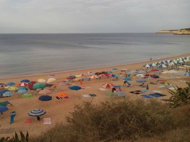 Zoomarine and Silves join forces to clean up Armação de Pêra's beaches