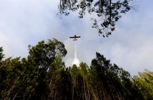 Portugal gains upper hand over wildfire as death toll rises to 64