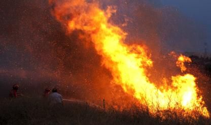 Forest fires increase five-fold
