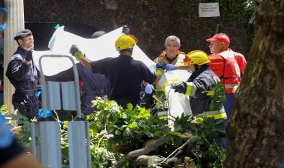 Madeira: Falling tree kills 13 during Assumption Day festival