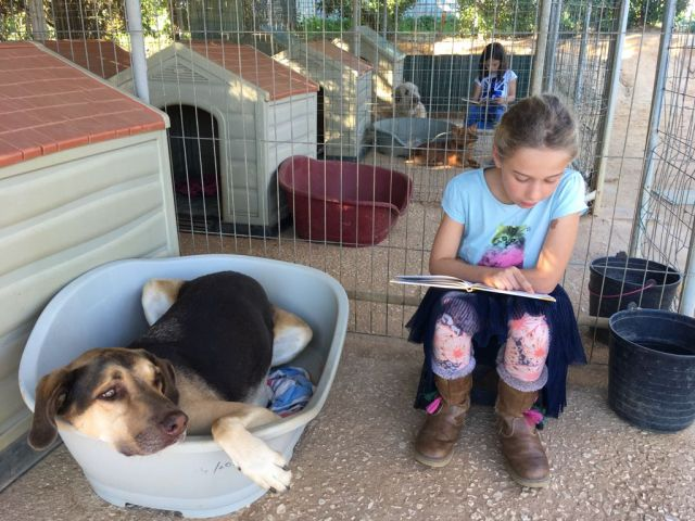'Reading to Dogs' launches in Lagoa