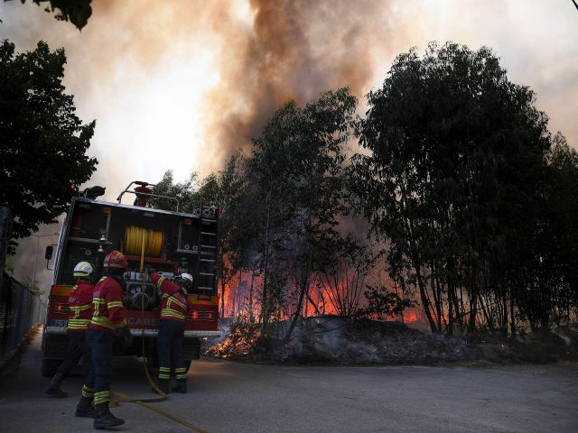Fewer wildfires and less land bur ned in 2019