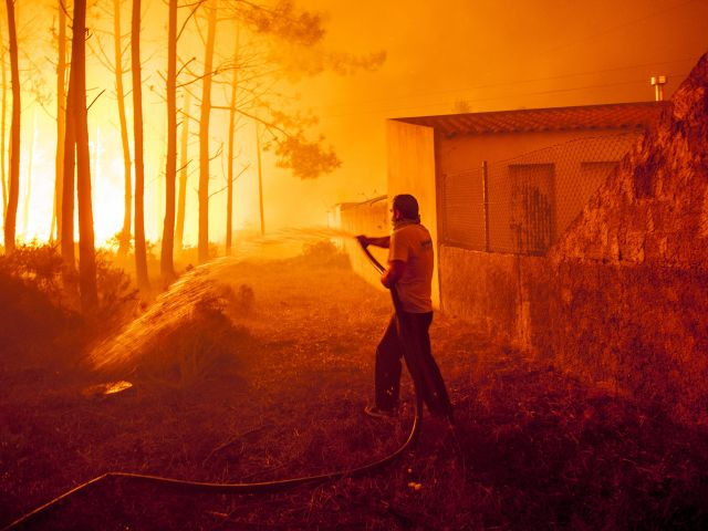 Government to scrap firefighting calendar