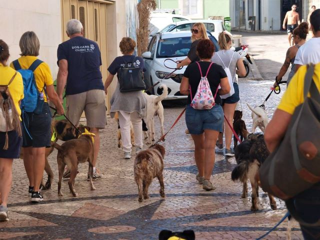 Portugal marks World Animal Day