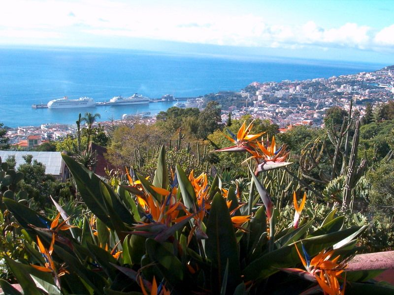Non-resident property purchases in Madeira up 55%