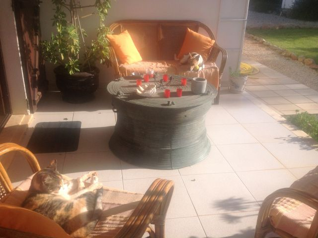 Rare Chinese drum stolen from Algarve villa garden