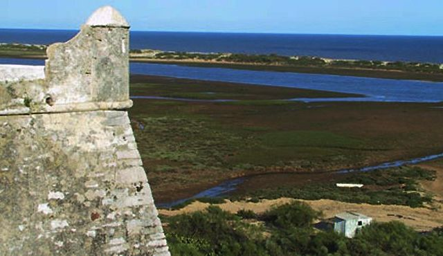 Strange white foam appears on Algarve's Ria Formosa